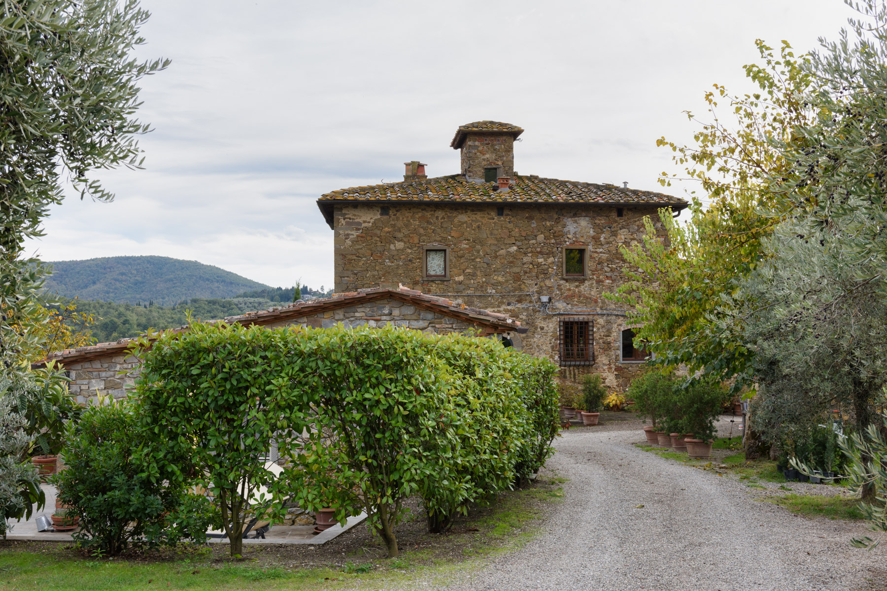 Additional photo for property listing at Detached beautiful country house amongst the olive groves Loc. Bricciano Gaiole In Chianti, Siena 53013 Italy