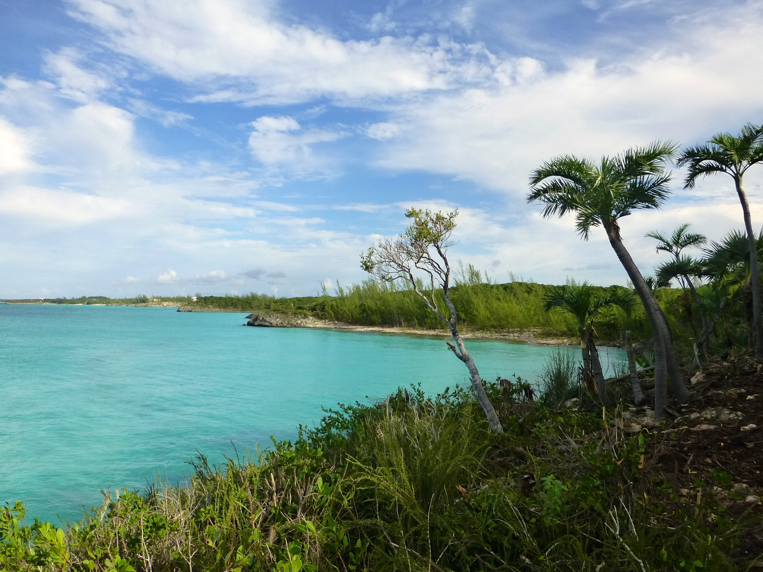 Land for Sale at Secluded Seaside Acreage Gregory Town, Eleuthera Bahamas