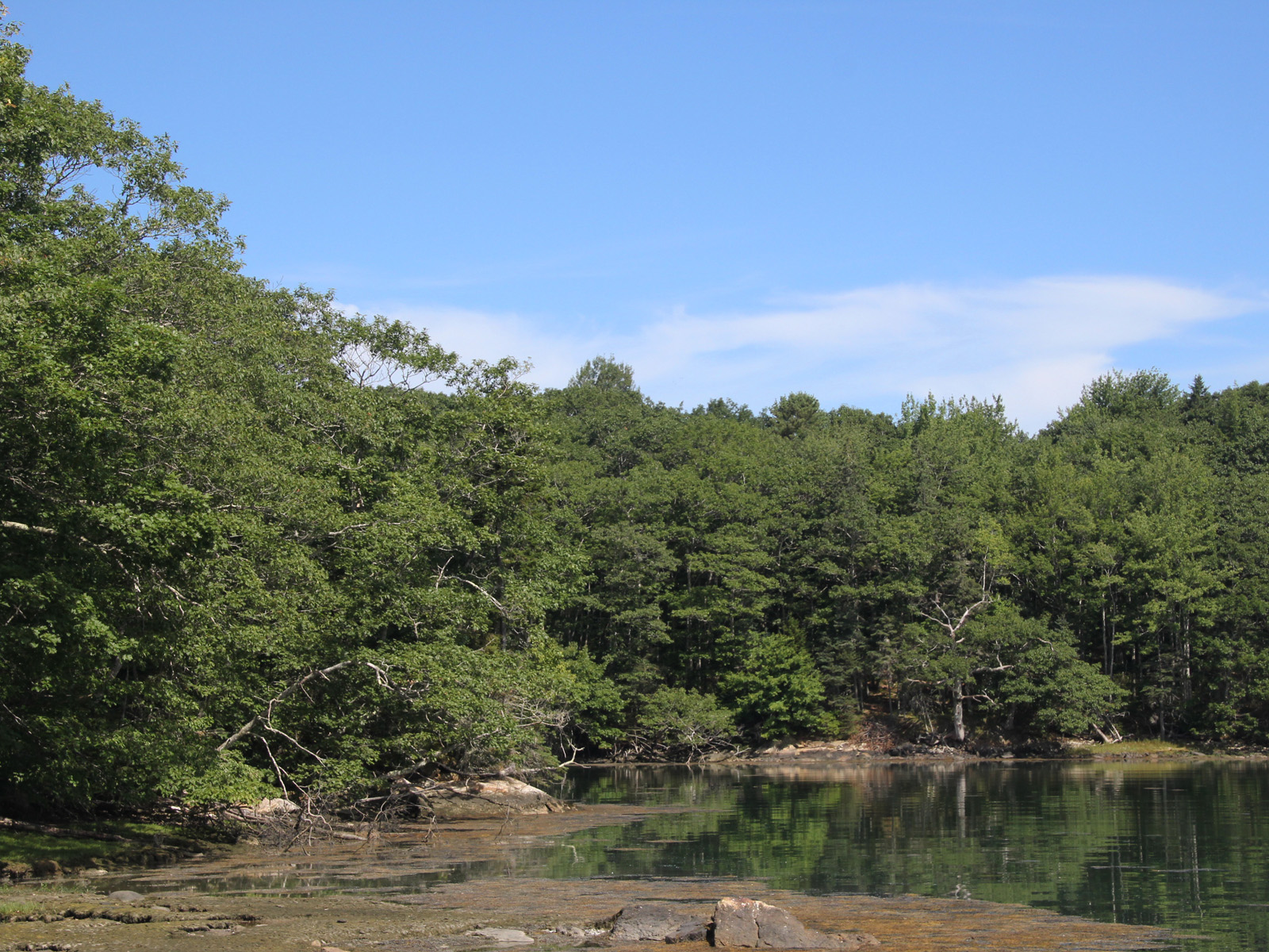 Land for Sale at Jones Point Land 10 Jones Point Road South Bristol, Maine 04568 United States