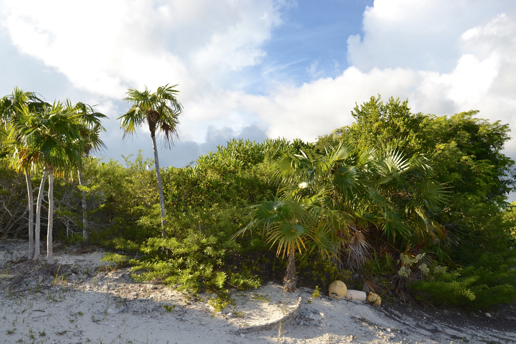 Additional photo for property listing at North Caicos Land Oceanview Whitby, Caïque Septentrionale TCI Îles Turques Et Caïques