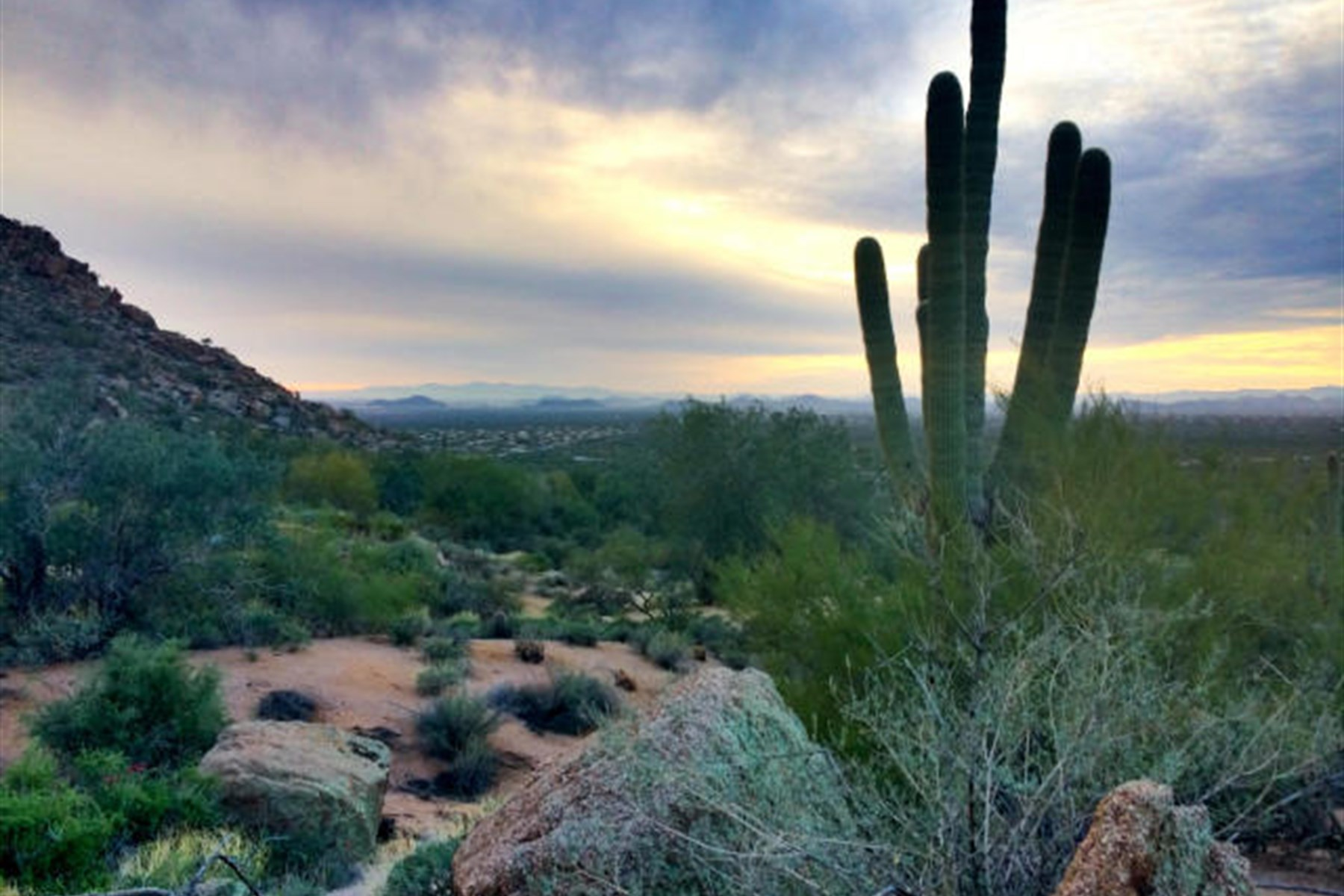 Land for Sale at One of Estancia's finest remaining lots 26976 N 98th Way #231 Scottsdale, Arizona, 85262 United States