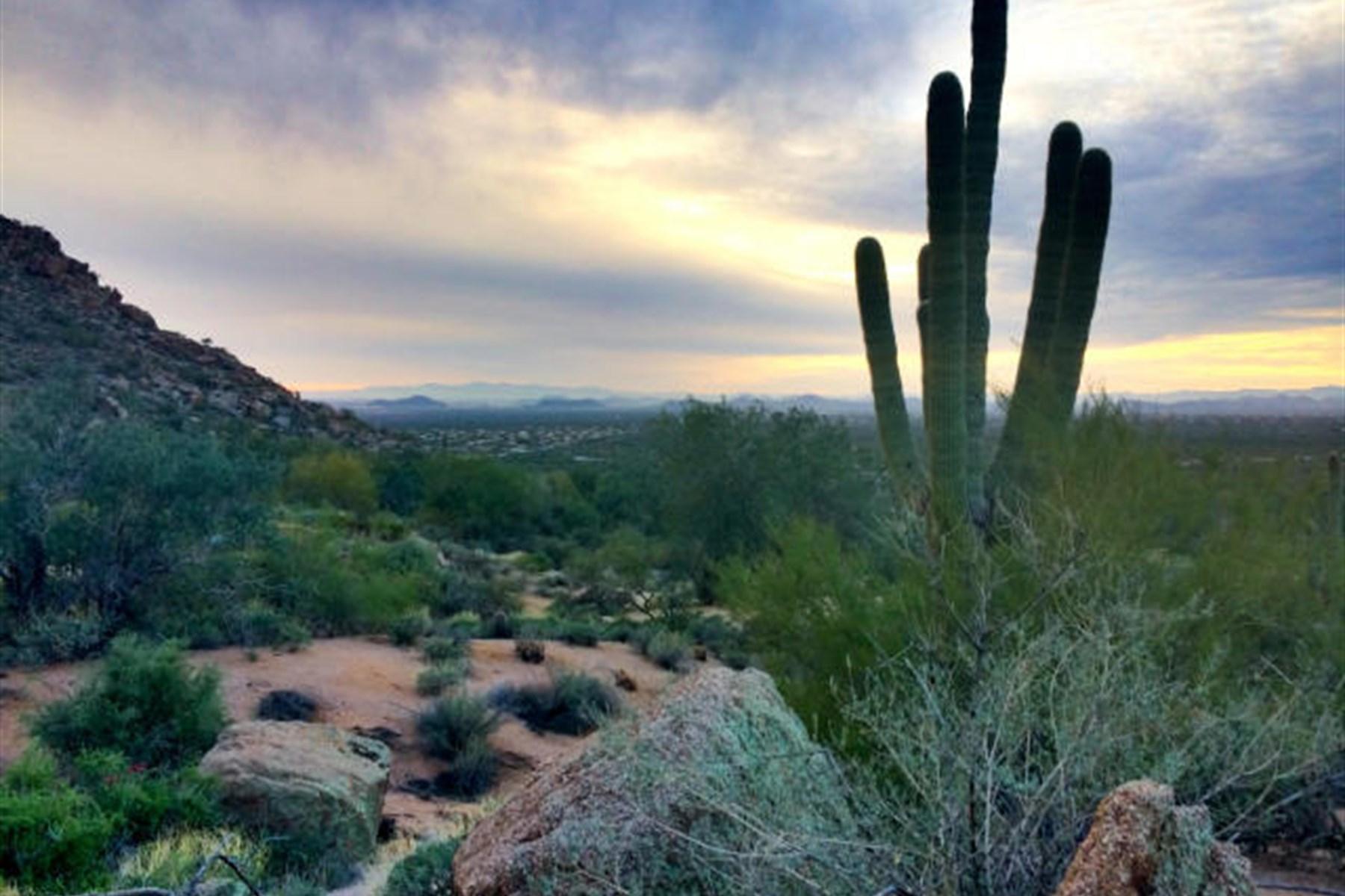 Terrain pour l Vente à One of Estancia's finest remaining lots 26976 N 98th Way #231 Scottsdale, Arizona, 85262 États-Unis