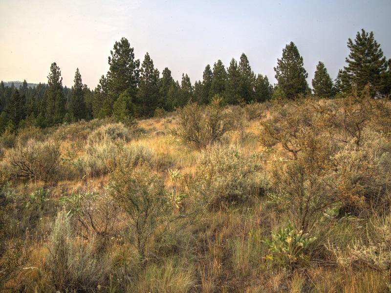 Terreno para Venda às Sapphire Ridge Ranch Florence, Montana 59833 Estados Unidos