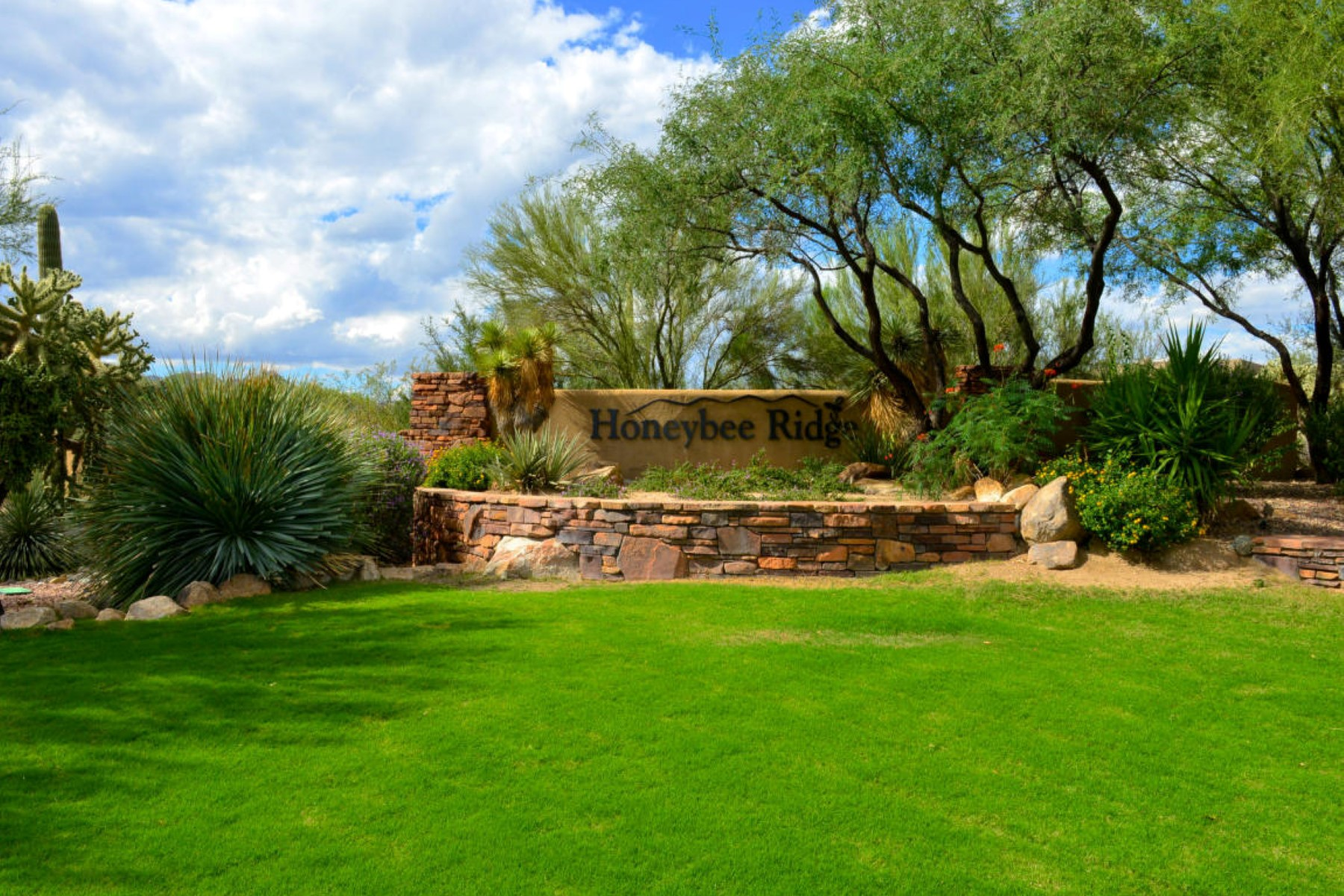 Terreno para Venda às Elevated 1.02 acre gently slopped easy build homesite 14601 N Quiet Rain Drive 57 Oro Valley, Arizona, 85755 Estados Unidos