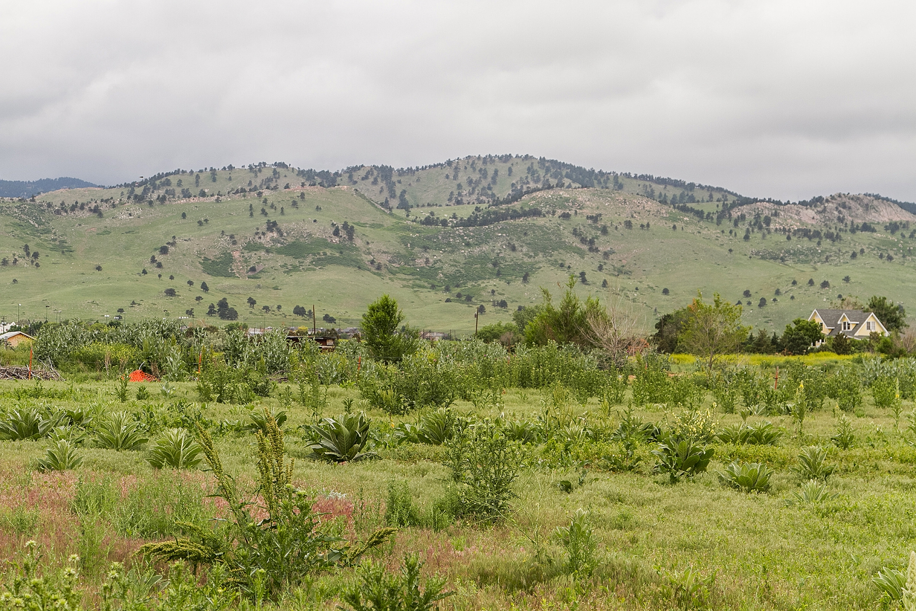 Land for Sale at Beautiful Views 2435 Yarmouth Ave Boulder, Colorado 80304 United States