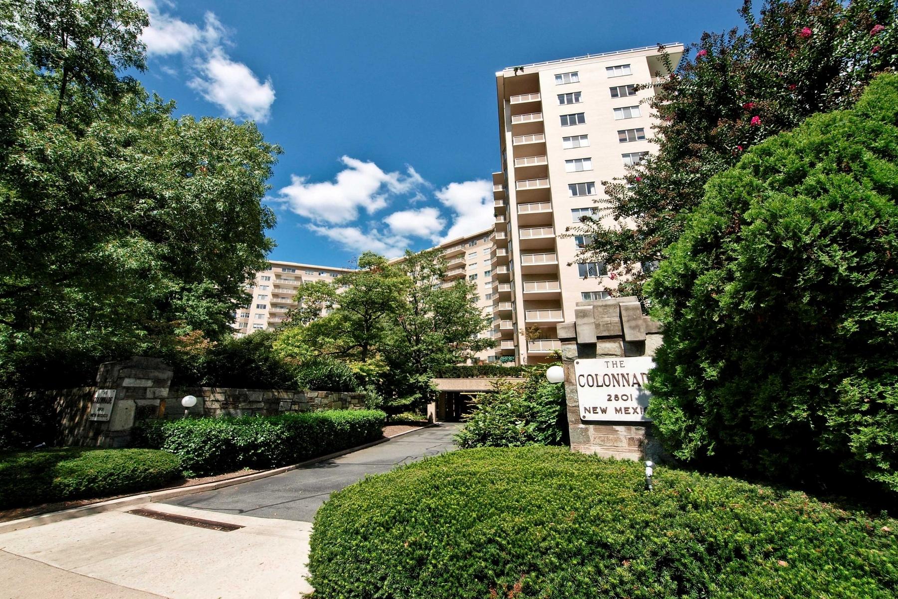 コンドミニアム のために 売買 アット Colonnade Condominium 2801 New Mexico Ave NW #1005 Washington, コロンビア特別区 20011 アメリカ合衆国