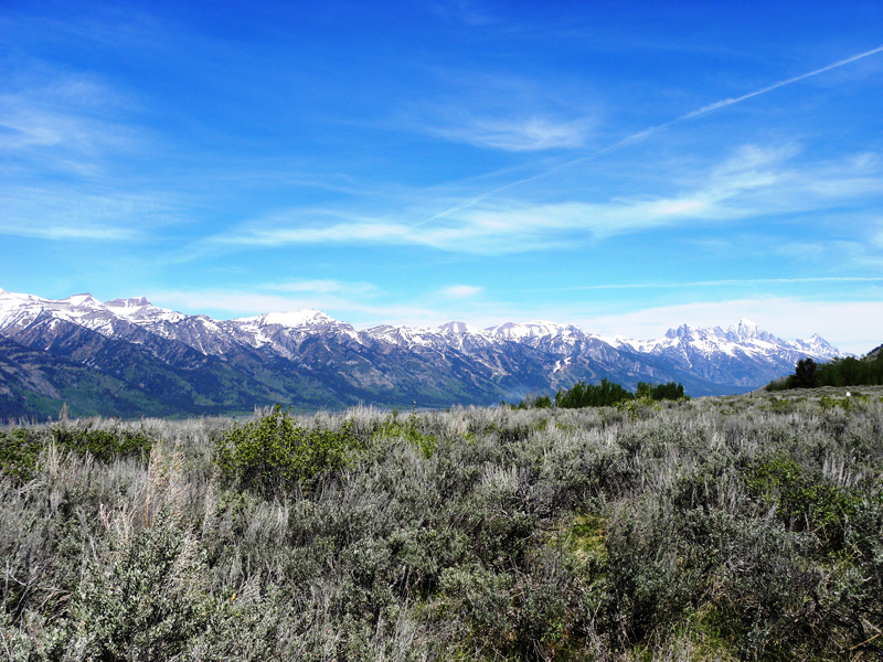 Property For Sale at Atop North Gros Ventre