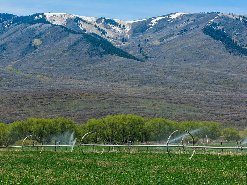 Terreno per Vendita alle ore Great Land Opportunity in Wallsburg No Situs Address Assigned Wallsburg, Utah 84082 Stati Uniti
