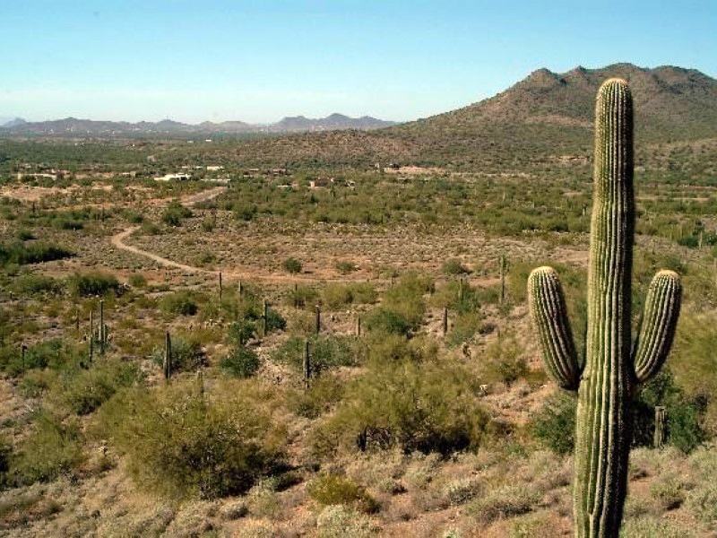 Land for Sale at Mountain Preserve Custom Estate Lot in Cave Creek, AZ 36520 N Silver Star Circle #3 Cave Creek, Arizona, 85331 United States
