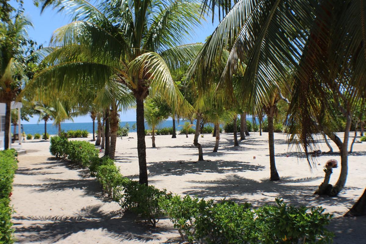Terrain pour l Vente à Hibuscus Beach Residences, Lot No. 1 Placencia, Stann Creek, Belize
