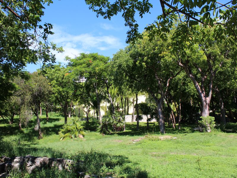 Additional photo for property listing at Lot 38 Pink Sands Resort Harbour Island, Eleuthera Bahamas