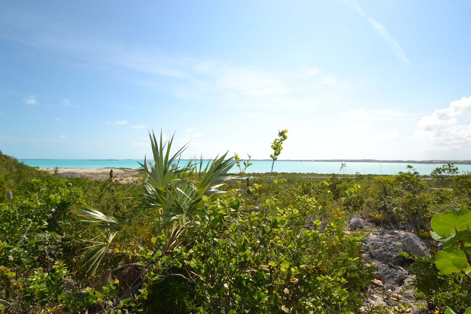 Additional photo for property listing at Vacant Land Cooper Jack Cooper Jack, Providenciales Îles Turques Et Caïques