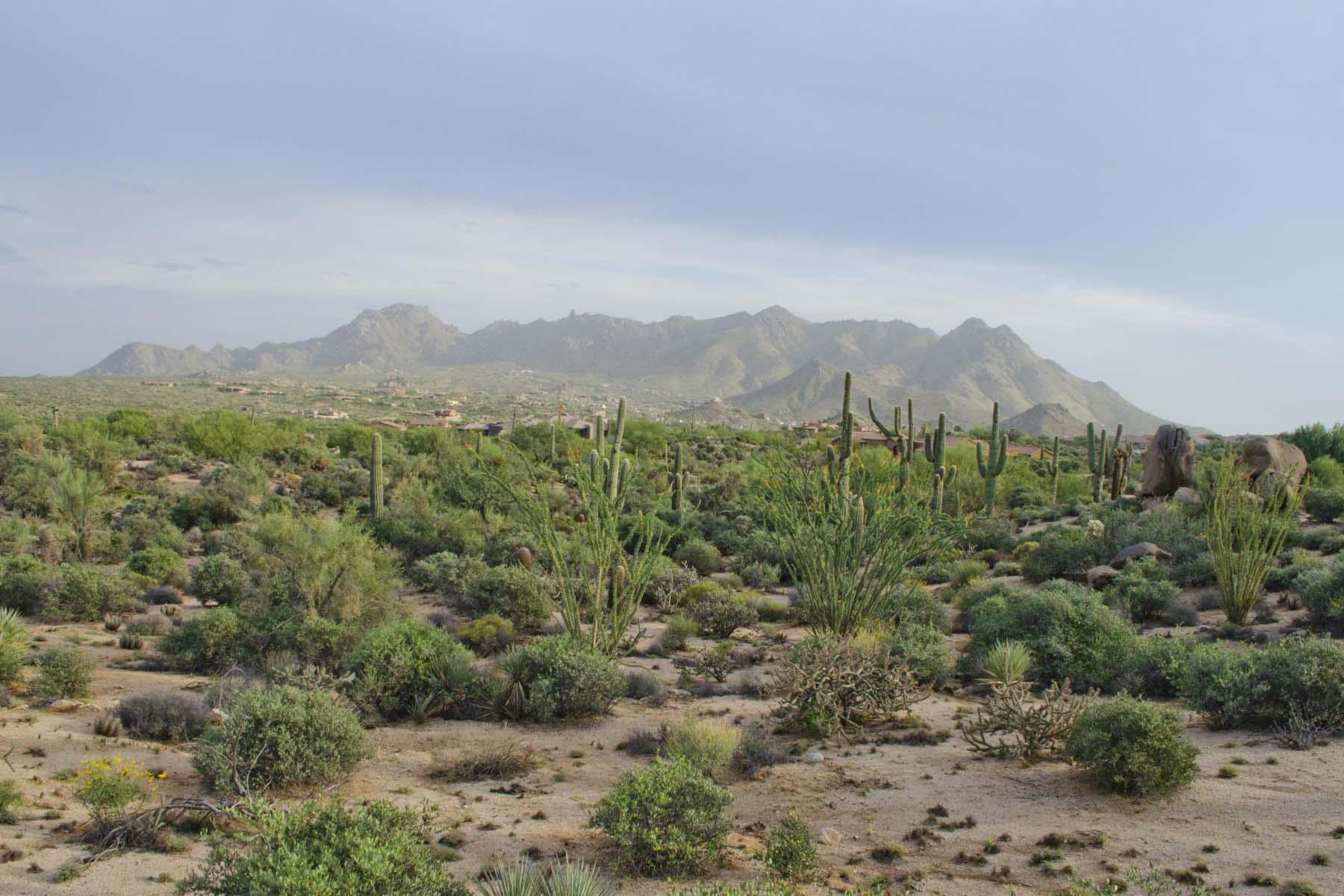 Đất đai vì Bán tại Signature homesite in gated Yearling Estates. 26125 N 116TH ST #1 Scottsdale, Arizona 85255 Hoa Kỳ
