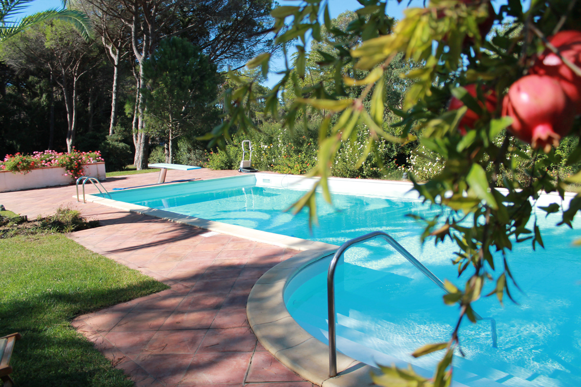 Additional photo for property listing at Exquisite villa surrounded by a private garden via del Pozzino Punta Ala, Grosseto 58043 Italie