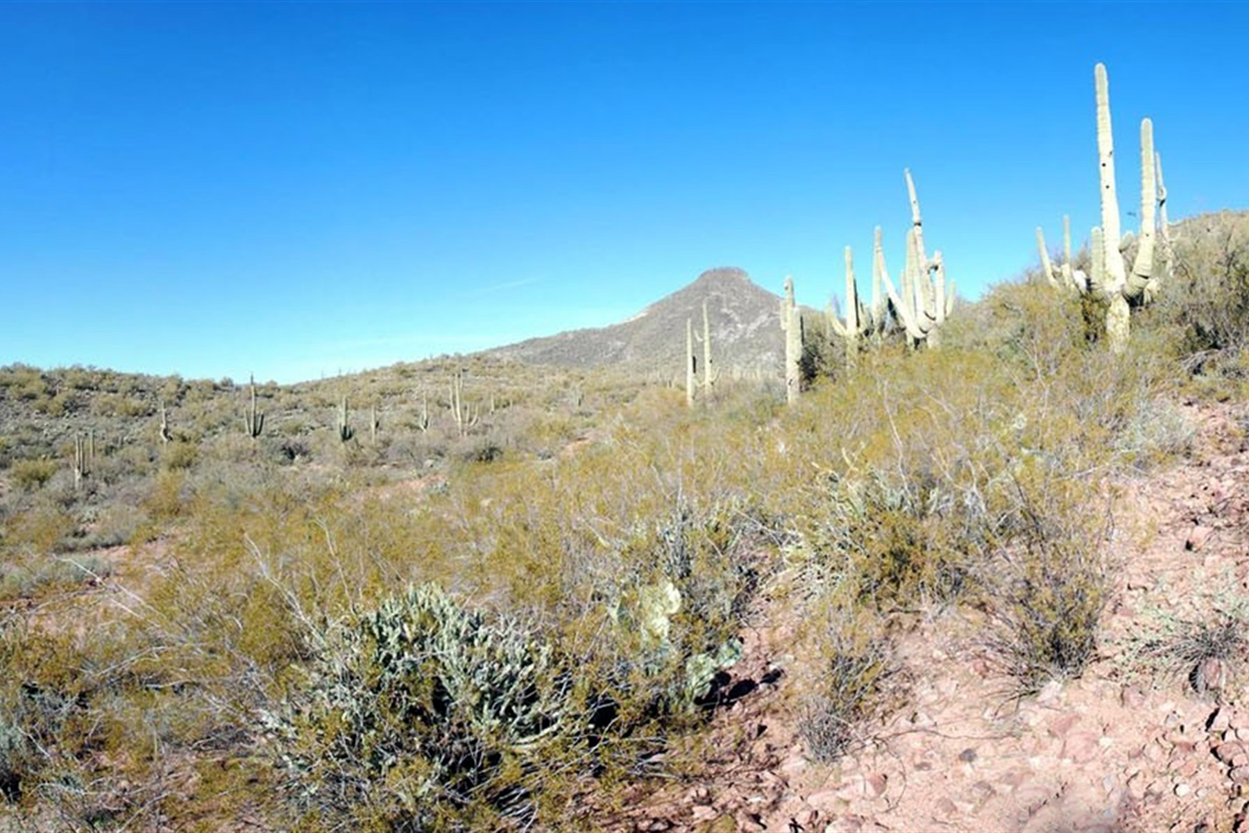 Property For Sale at Development Opportunity; Ranch Zoned for Livestock or Portfolio Investment