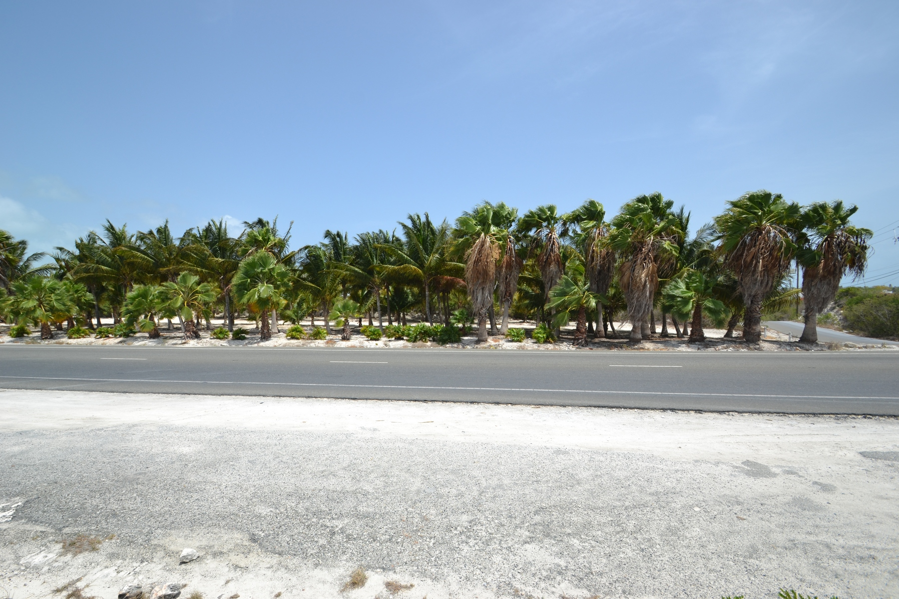 Additional photo for property listing at Large Parcel on Leeward Highway 格蕾斯湾, 普罗维登夏 特克斯和凯科斯群岛