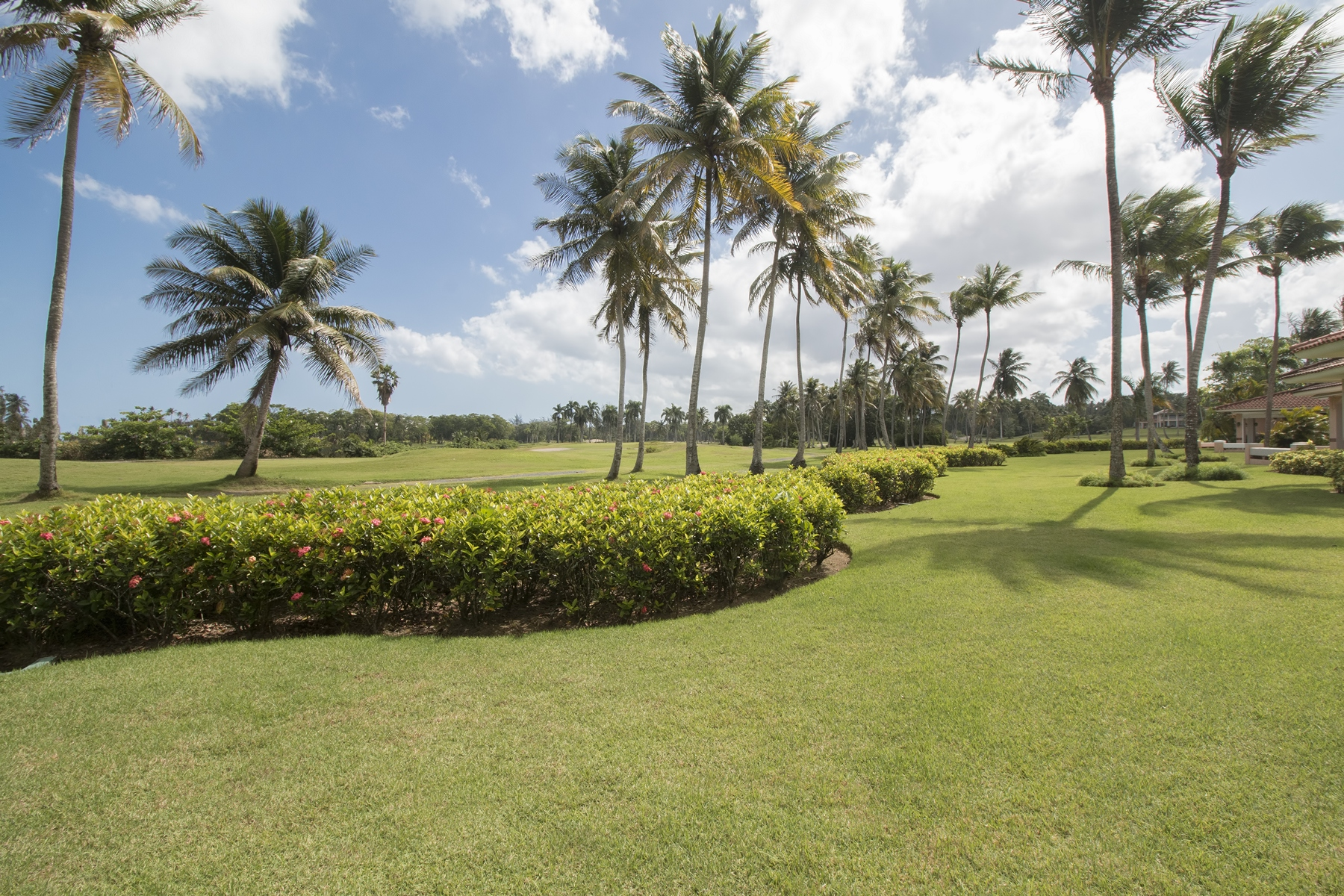 Additional photo for property listing at 3 The Greens at Dorado Beach Green Villas Drive Dorado, Puerto Rico 00646 Puerto Rico