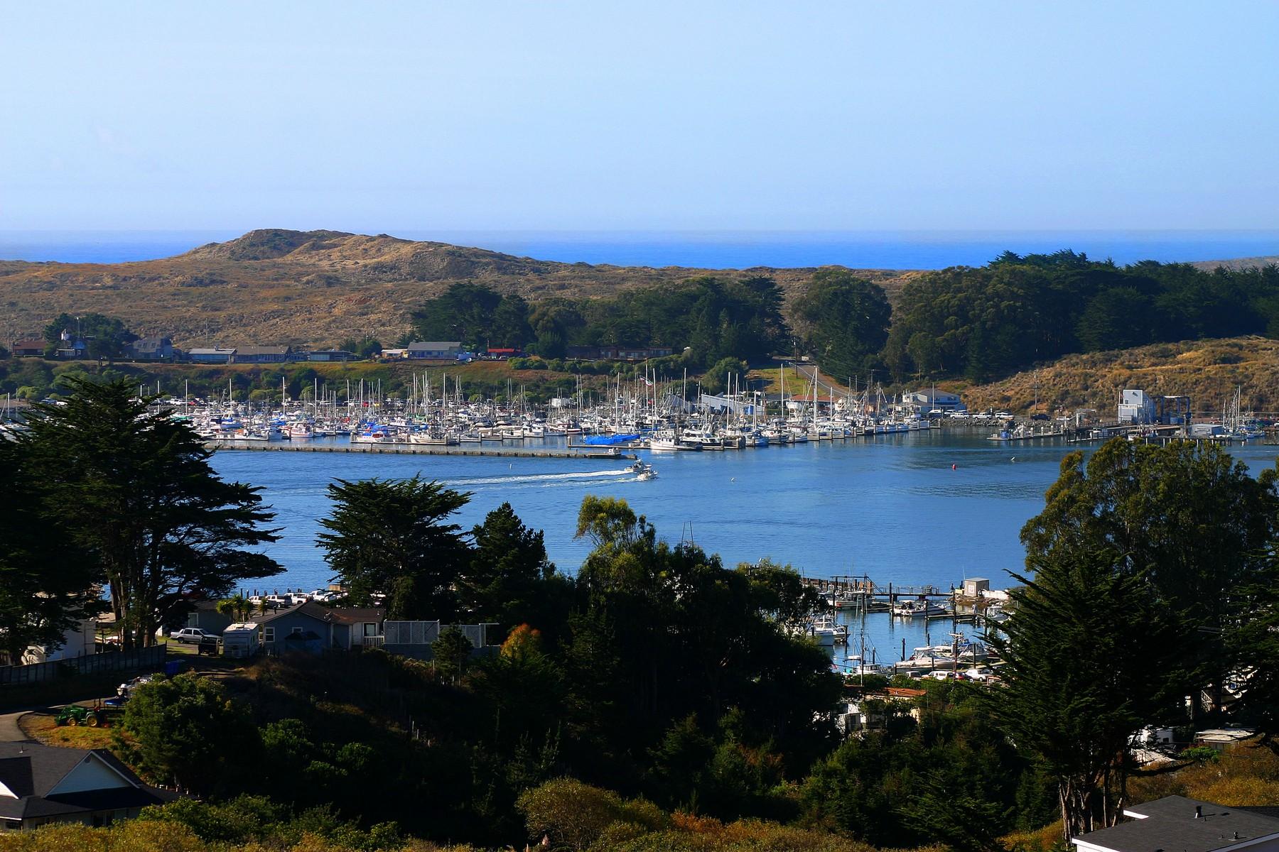 Terrain pour l Vente à 20 +/- Acre Estate Parcel 1880 Highway 1 Bodega Bay, Californie 94923 États-Unis