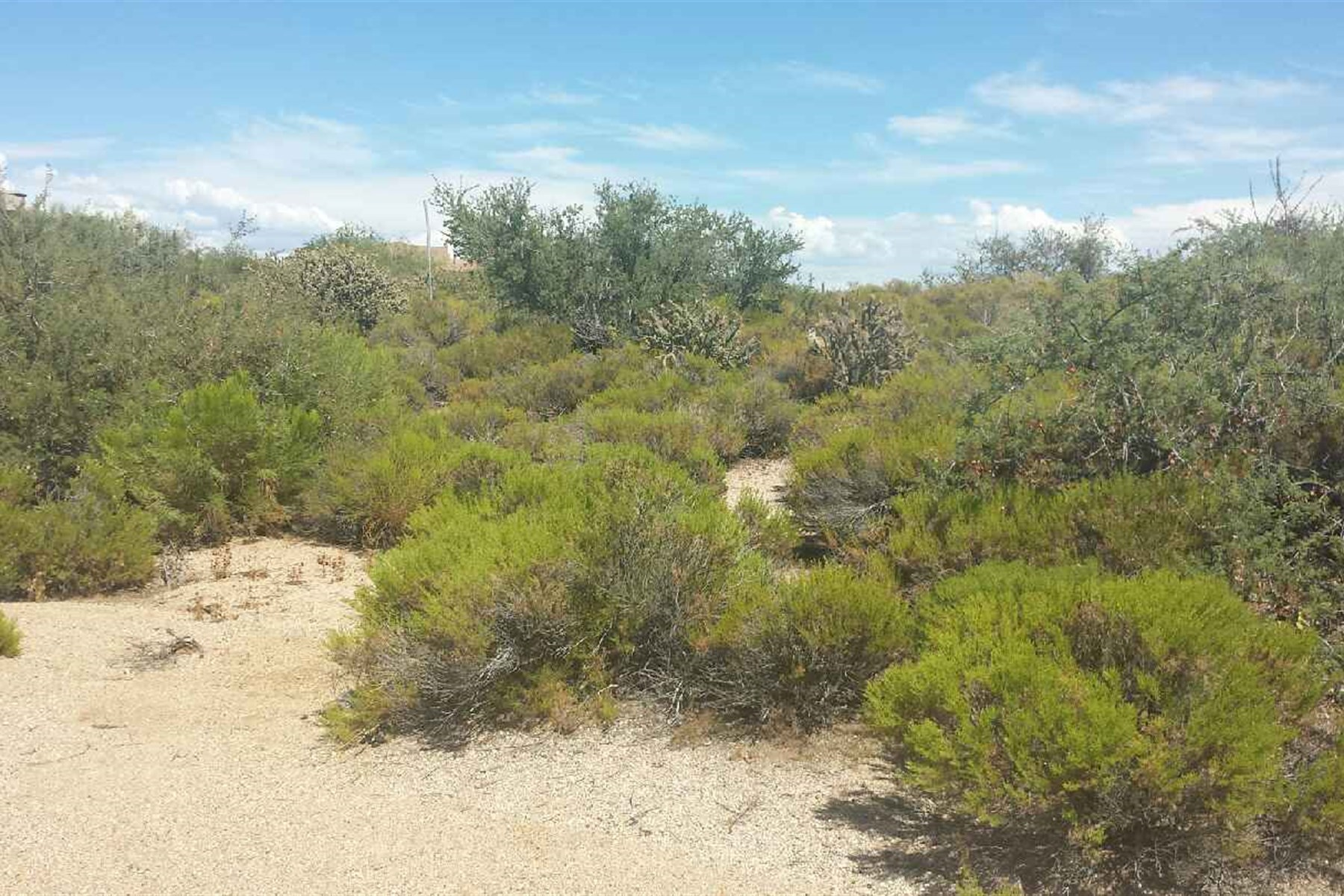 Property For Sale at Interior Custom Homesite on almost 3/4 acres.