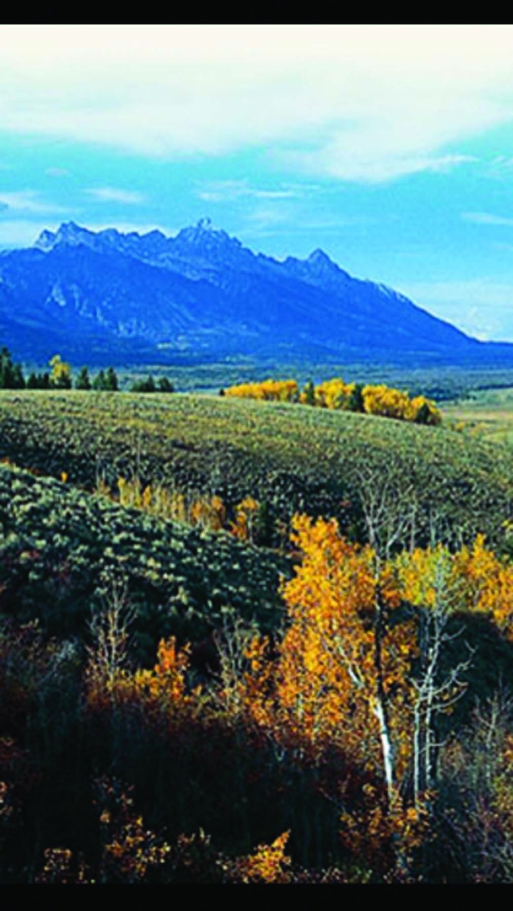 Property Of Exceptional Grand Teton View