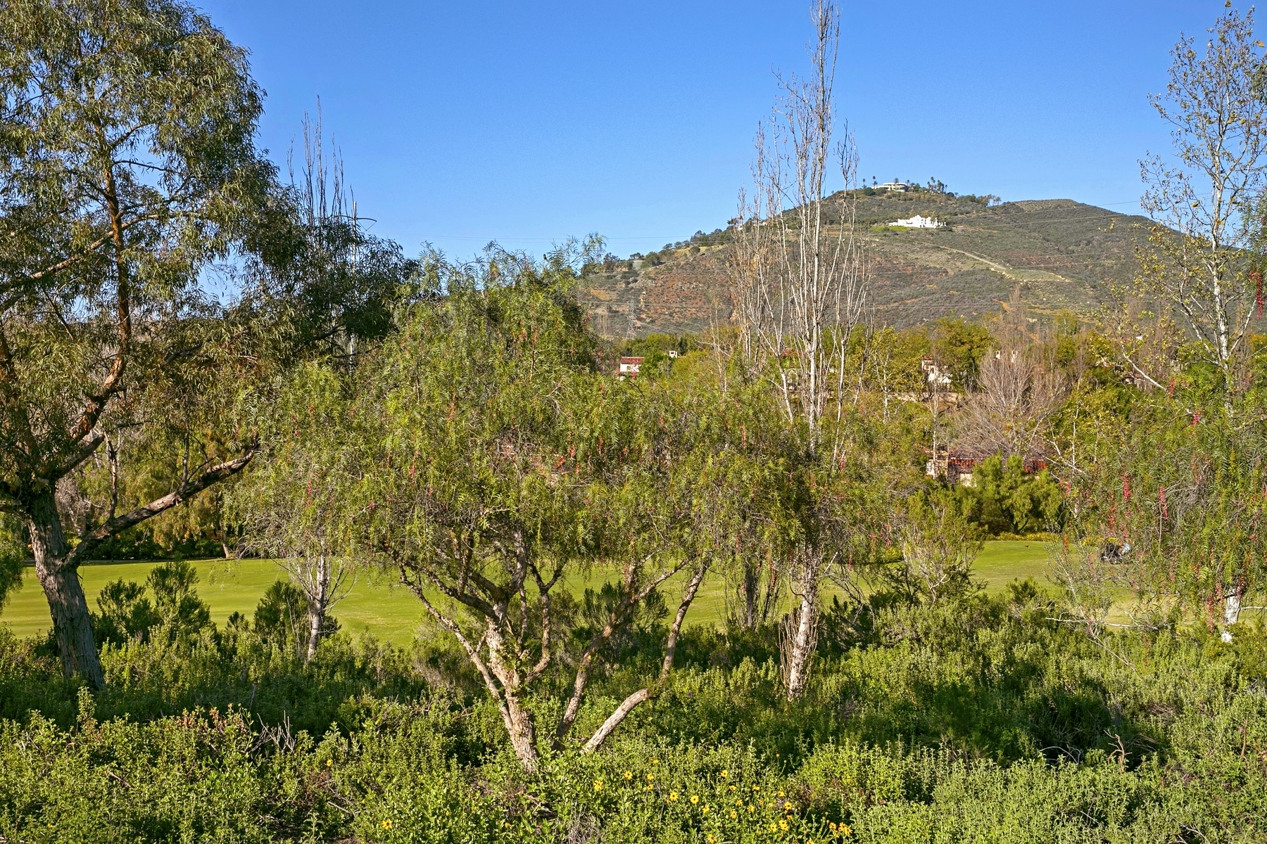 Additional photo for property listing at 18484 Calle La Serra  Rancho Santa Fe, California 92067 United States
