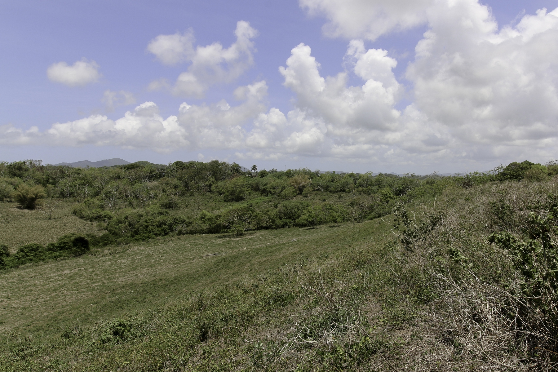Additional photo for property listing at Prime waterview land acreage Palmas Plantation 1A Lot B3 Palmas Del Mar, Puerto Rico 00791 Puerto Rico