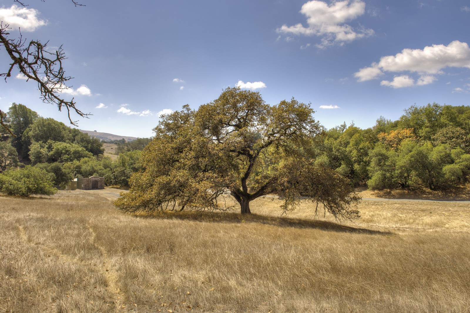 Land for Sale at 3141 Mantanzas Creek Lane Santa Rosa, California, 95404 United States