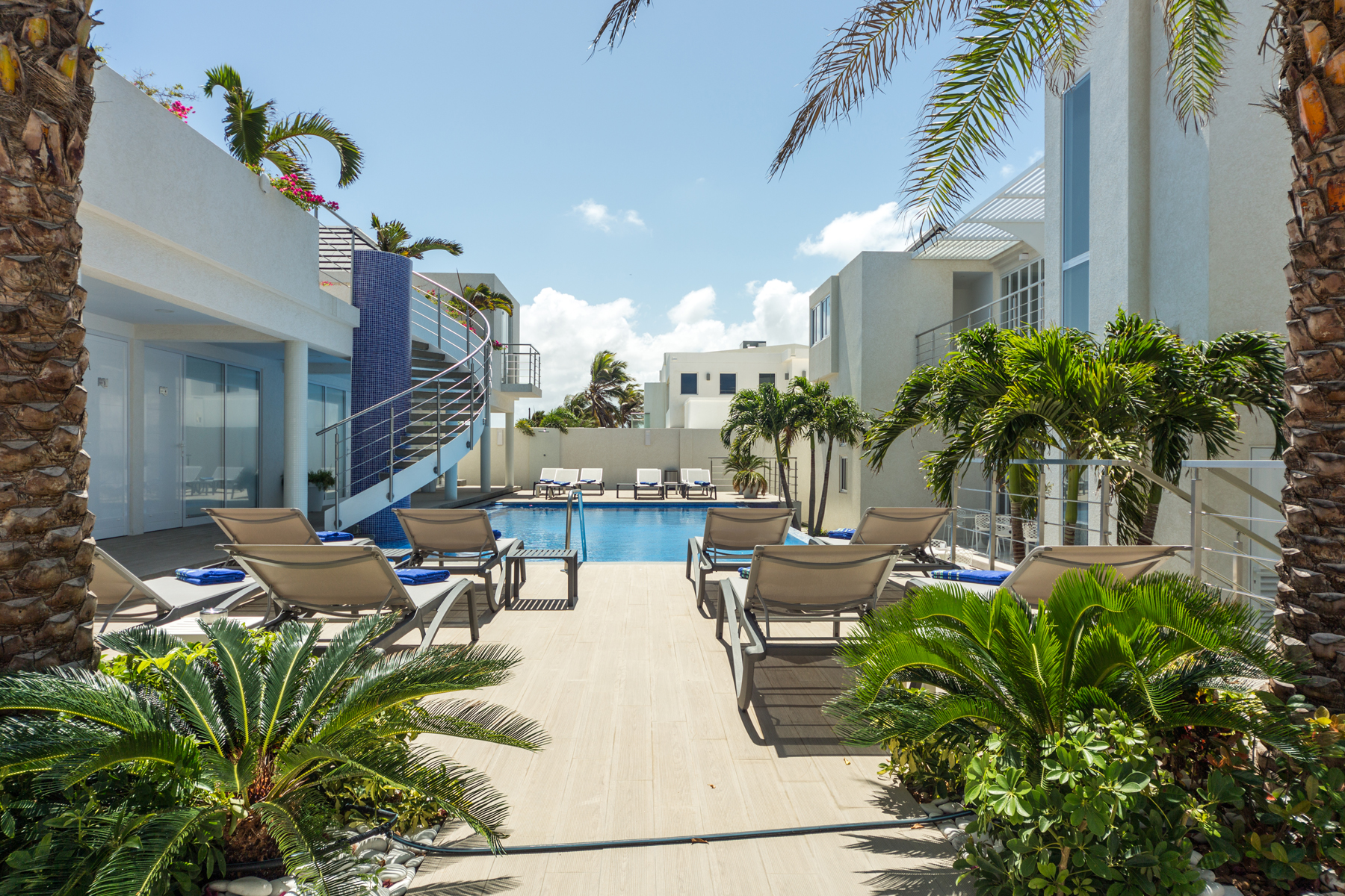 Additional photo for property listing at OceanZ Boutique Hotel Malmok, Aruba Aruba