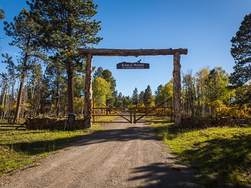 Land für Verkauf beim TBD S Sage Grouse Road, Lot 10 Placerville, Colorado, 81430 Vereinigte Staaten