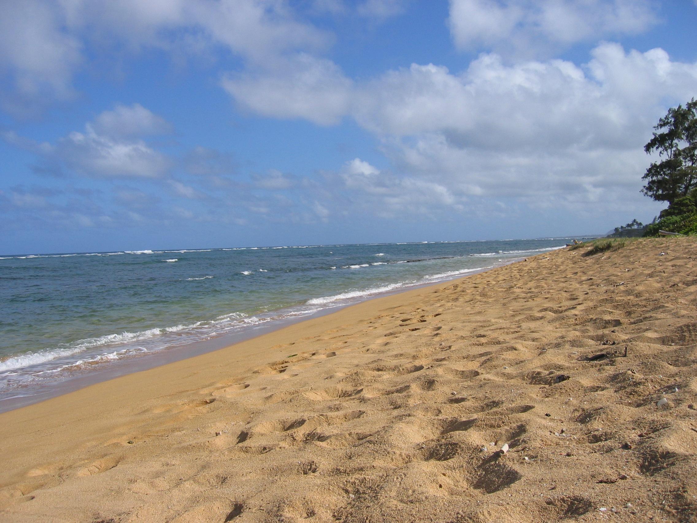 土地 为 销售 在 Fuji Beach 1077 Moanakai Rd 卡帕雅, 夏威夷, 96746 美国