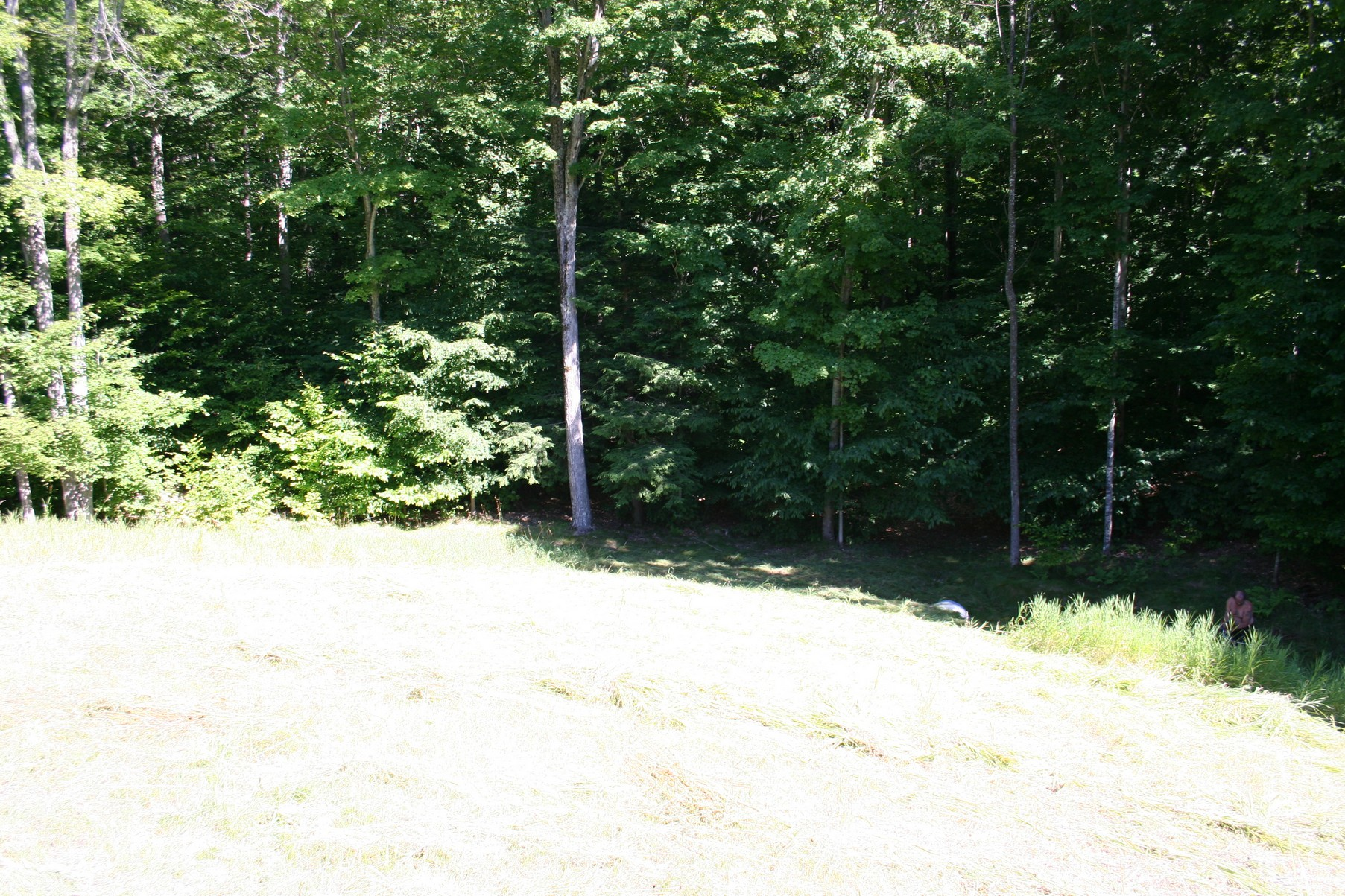 Land for Sale at Oaks of Walloon 5718 Ash Court Petoskey, Michigan, 49770 United States