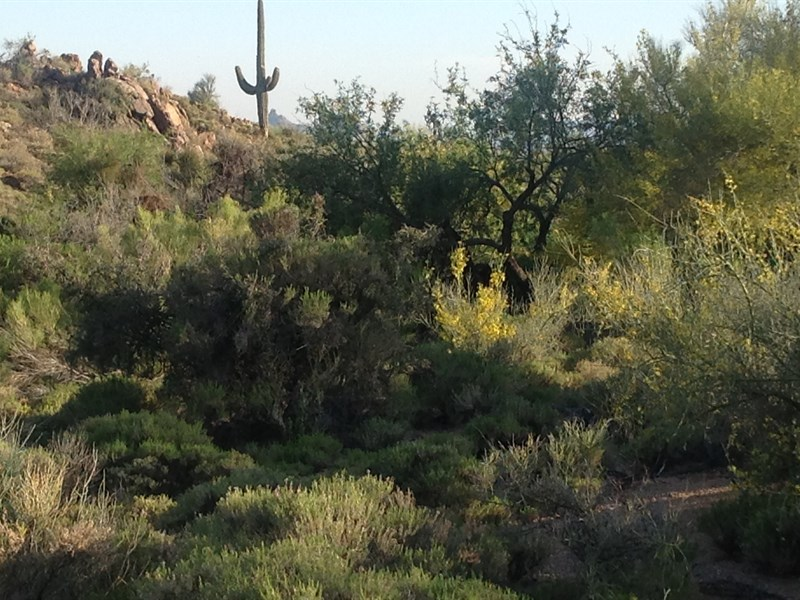 Land for Sale at Breathtaking Sunset Canyon Lot Offers Million Dollar Views In Desert Mountain 10935 E Falling Star Drive #71 Scottsdale, Arizona 85262 United States