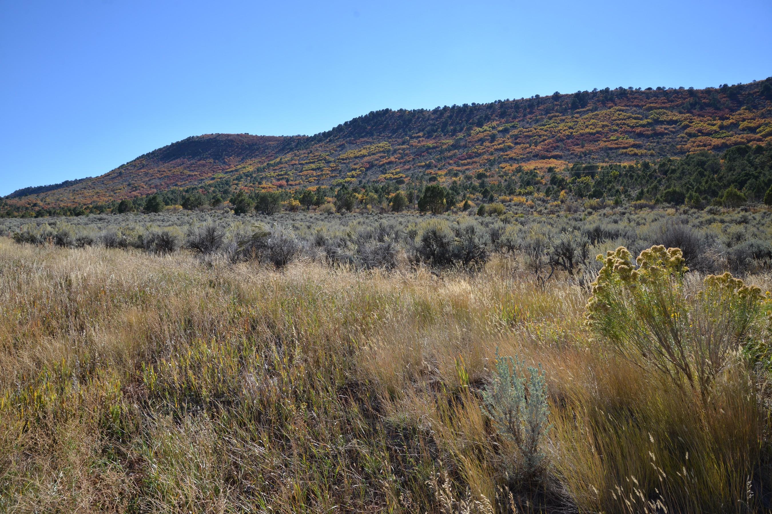 Land for Sale at Springridge Reserve Lot 34 Lot 34 Hidden Valley Drive Glenwood Springs, Colorado, 81601 United States