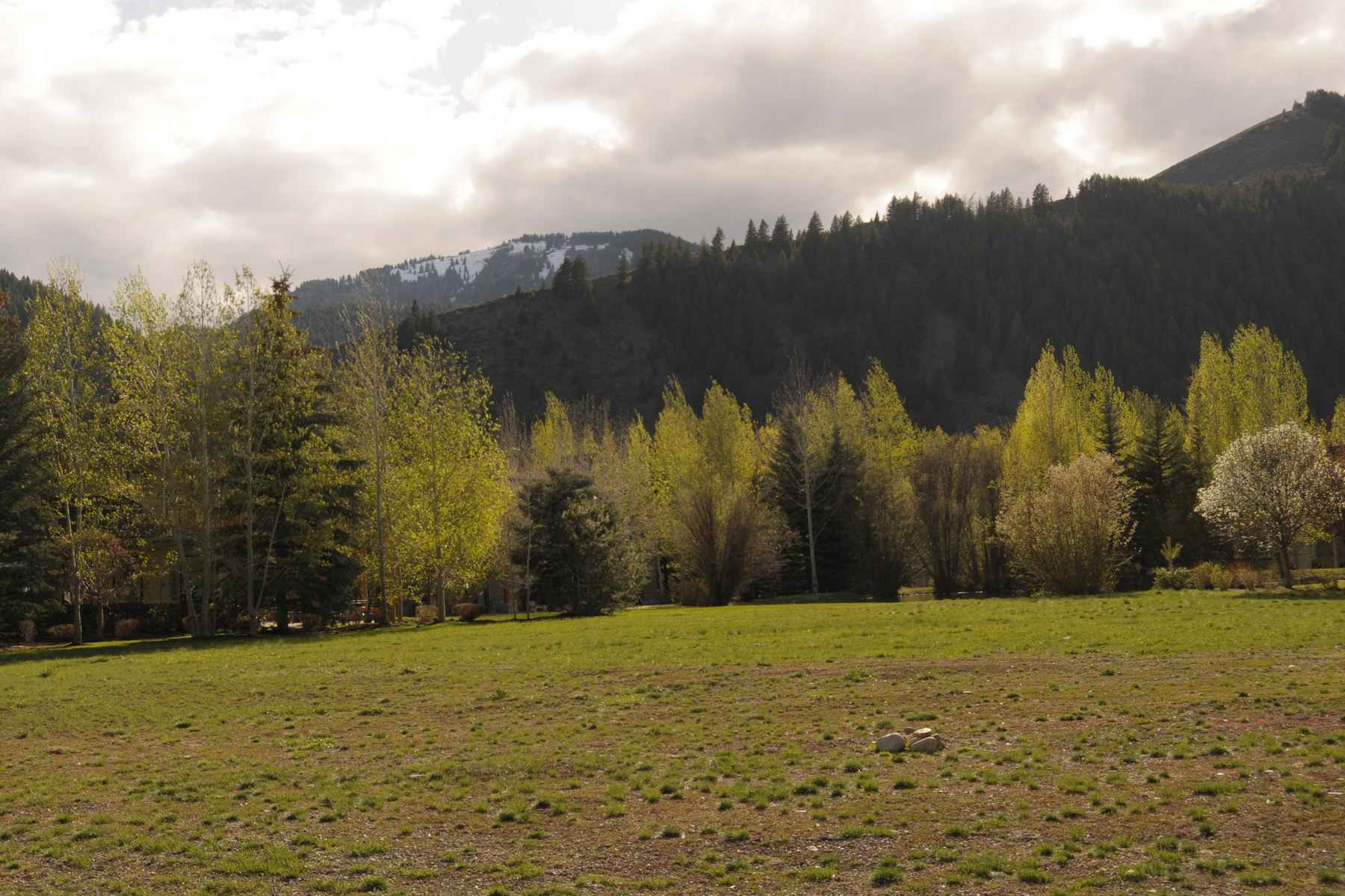 sales property at Lane Ranch Lot