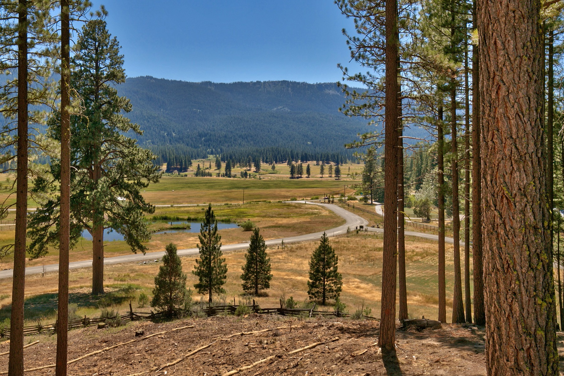 Land for Active at 249 Tantau Ranch Road Clio, California 96106 United States