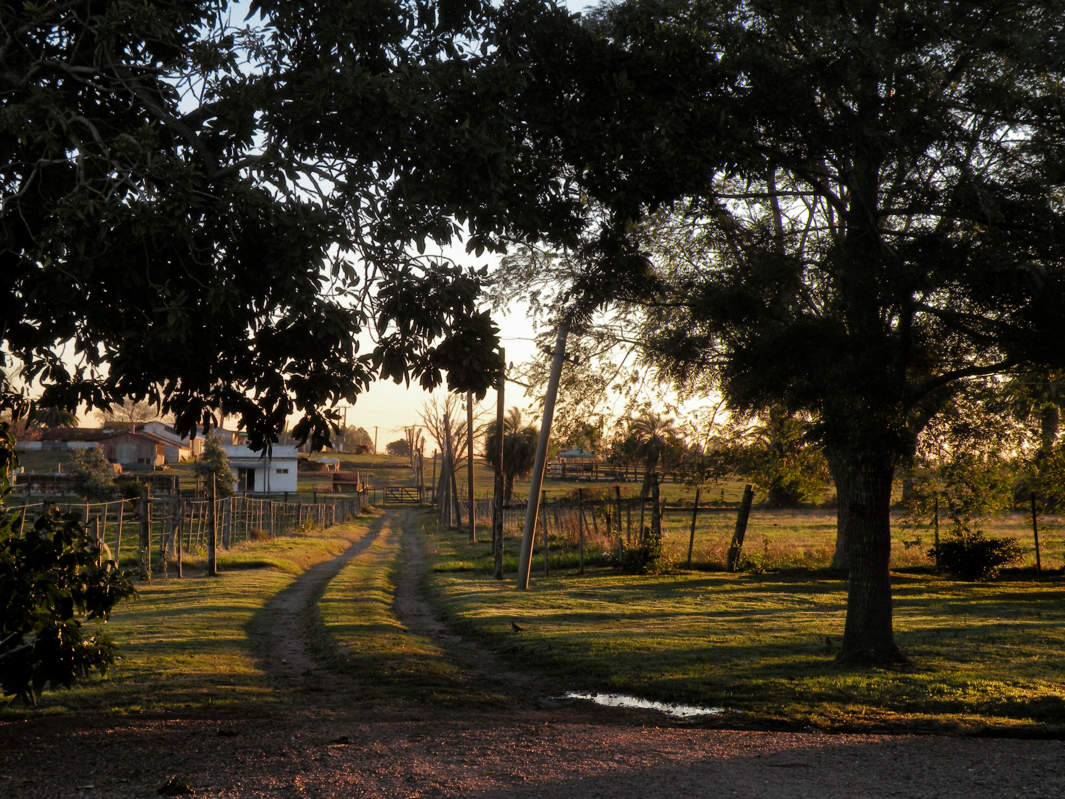 Farm / Ranch / Plantation for Sale at Establecimiento Tropa Vieja Other Montevideo, Montevideo, Uruguay