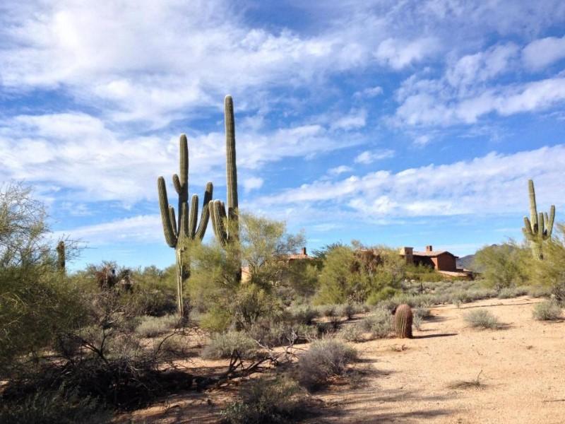 Terreno para Venda às Elevated Acre + Homesite in the Guard-Gated Community of Whisper Rock Estates 7399 E Sonoran Trail #43 Scottsdale, Arizona 85266 Estados Unidos