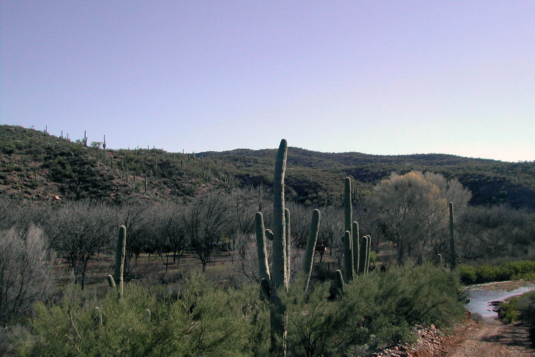 Terreno por un Venta en Wonderful 10 acre lot in Winkelman 88885 E Aravaipa Vista Winkelman, Arizona 85192 Estados Unidos