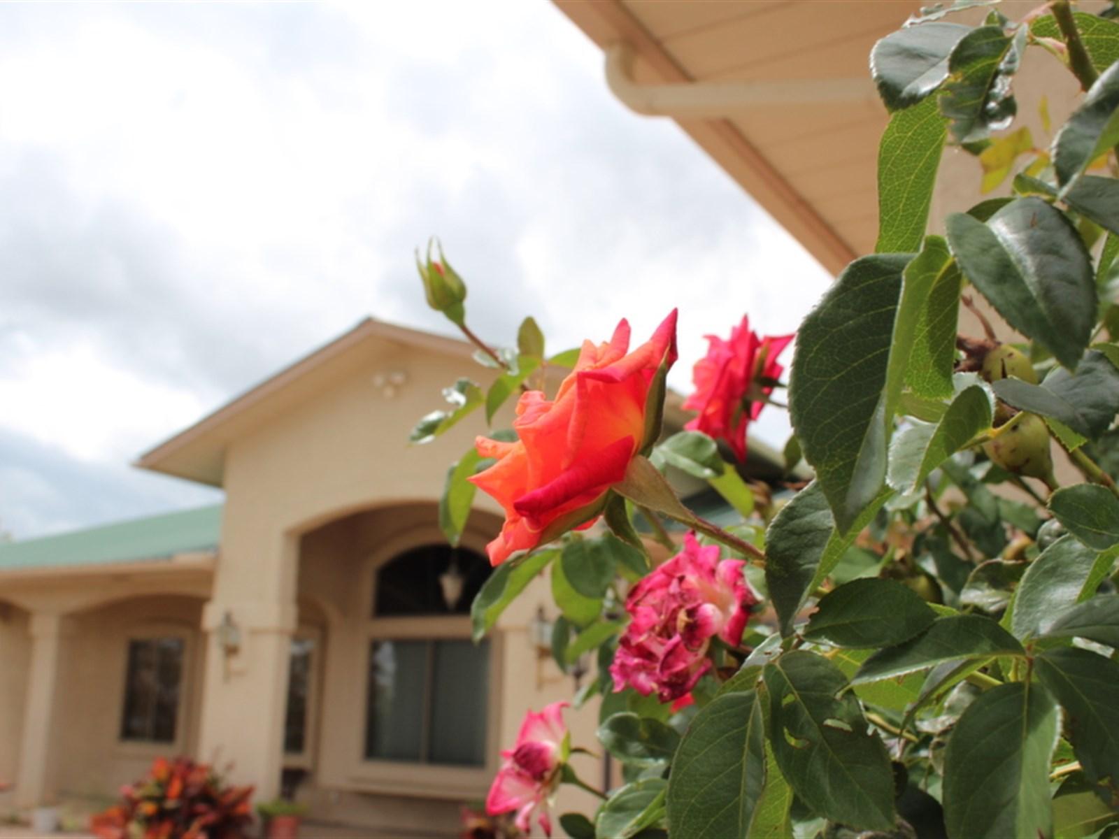 Casa Unifamiliar por un Venta en Perfect Family Home 5766 E Calle Coyote Hereford, Arizona 85616 Estados Unidos