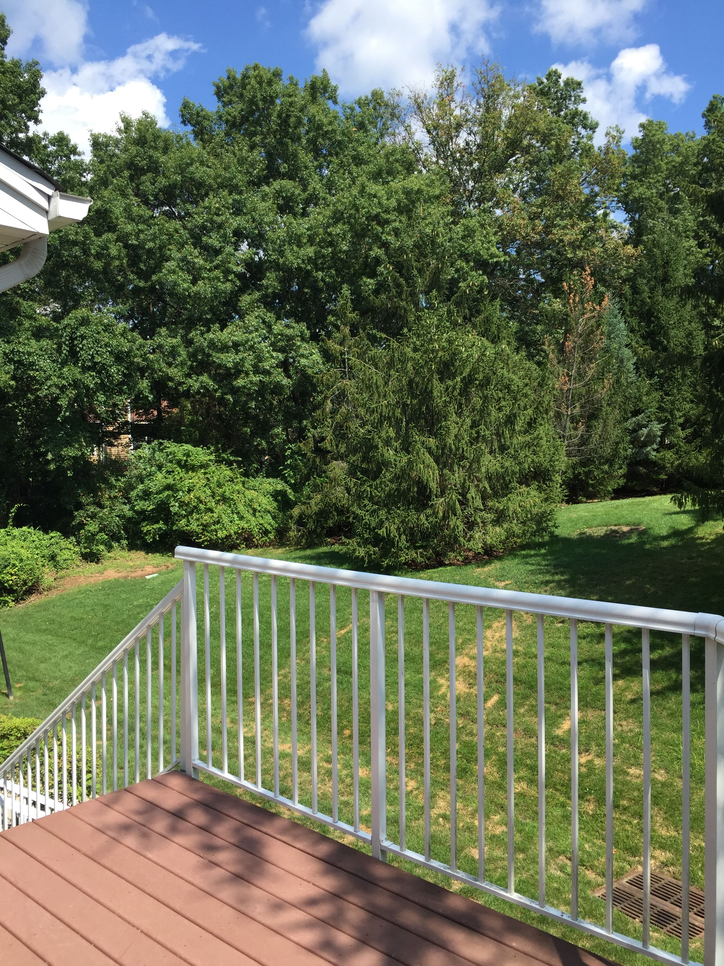 rentals property at Updated Condo!