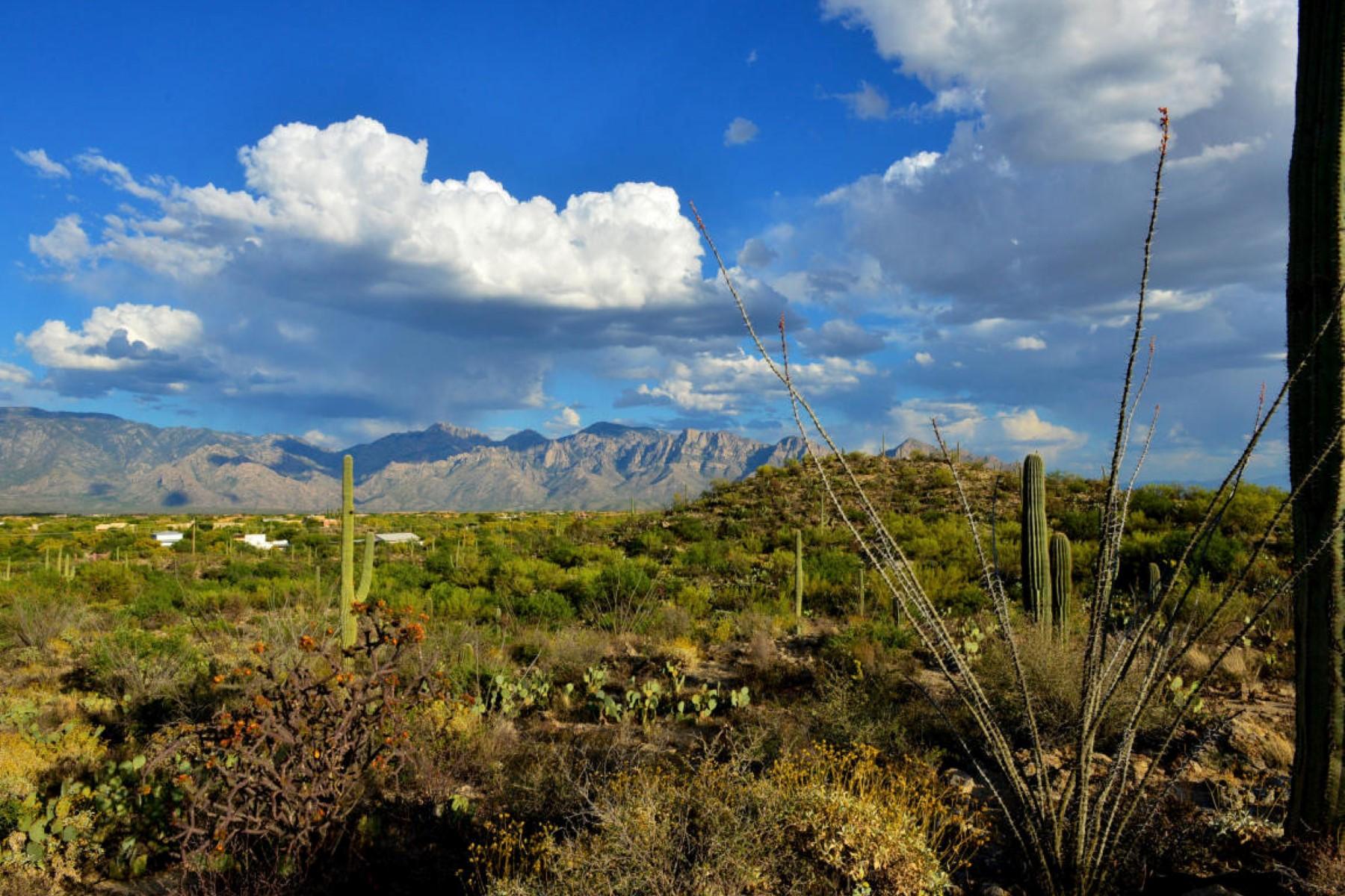 Земля для того Продажа на Rare opportunity to acquire a gorgeous parcel next to Stone Canyon. 14350 N Hawk Canyon Trail Legal Oro Valley, Аризона 85755 Соединенные Штаты