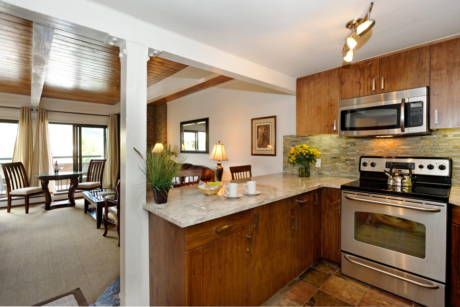 Condominio per Vendita alle ore Completely Remodeled Contemporary Studio 617 E Cooper Avenue Unit #224 Aspen, Colorado 81611 Stati Uniti
