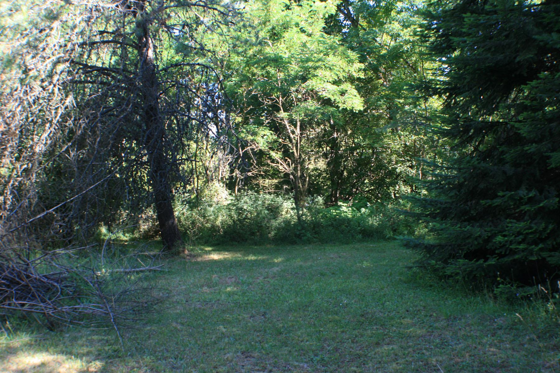 地產 為 出售 在 Private Parcel Nestled in the Woods NNA Lakeshore Dr Sagle, 愛達荷州 83860 美國
