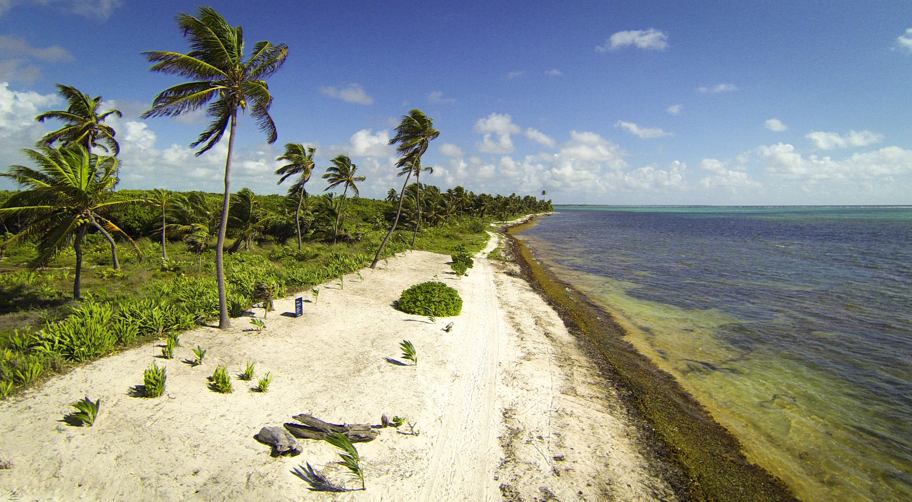 Additional photo for property listing at Residential Opportunity San Pedro Town, Ambergris Caye Belize