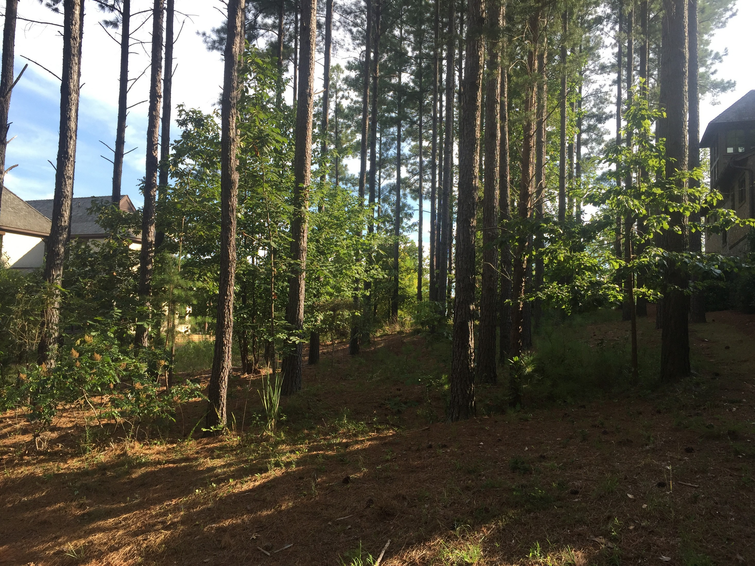 Land for Sale at An Easy Walk From this Home Site to World Class Amenities RES GL5 The Reserve At Lake Keowee, Sunset, South Carolina, 29685 United States