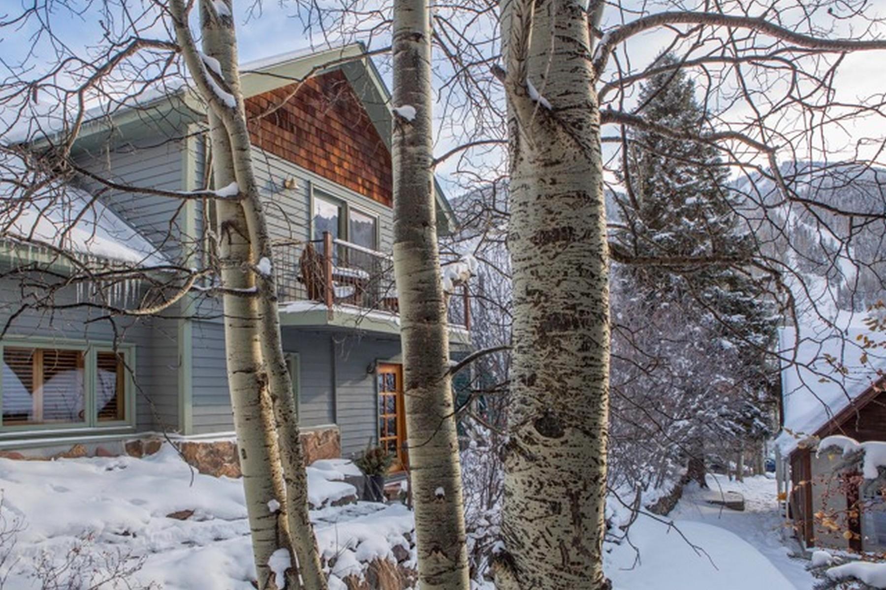 Condominio per Vendita alle ore 449 W Galena Avenue, Unit 1 Telluride, Colorado 81435 Stati Uniti