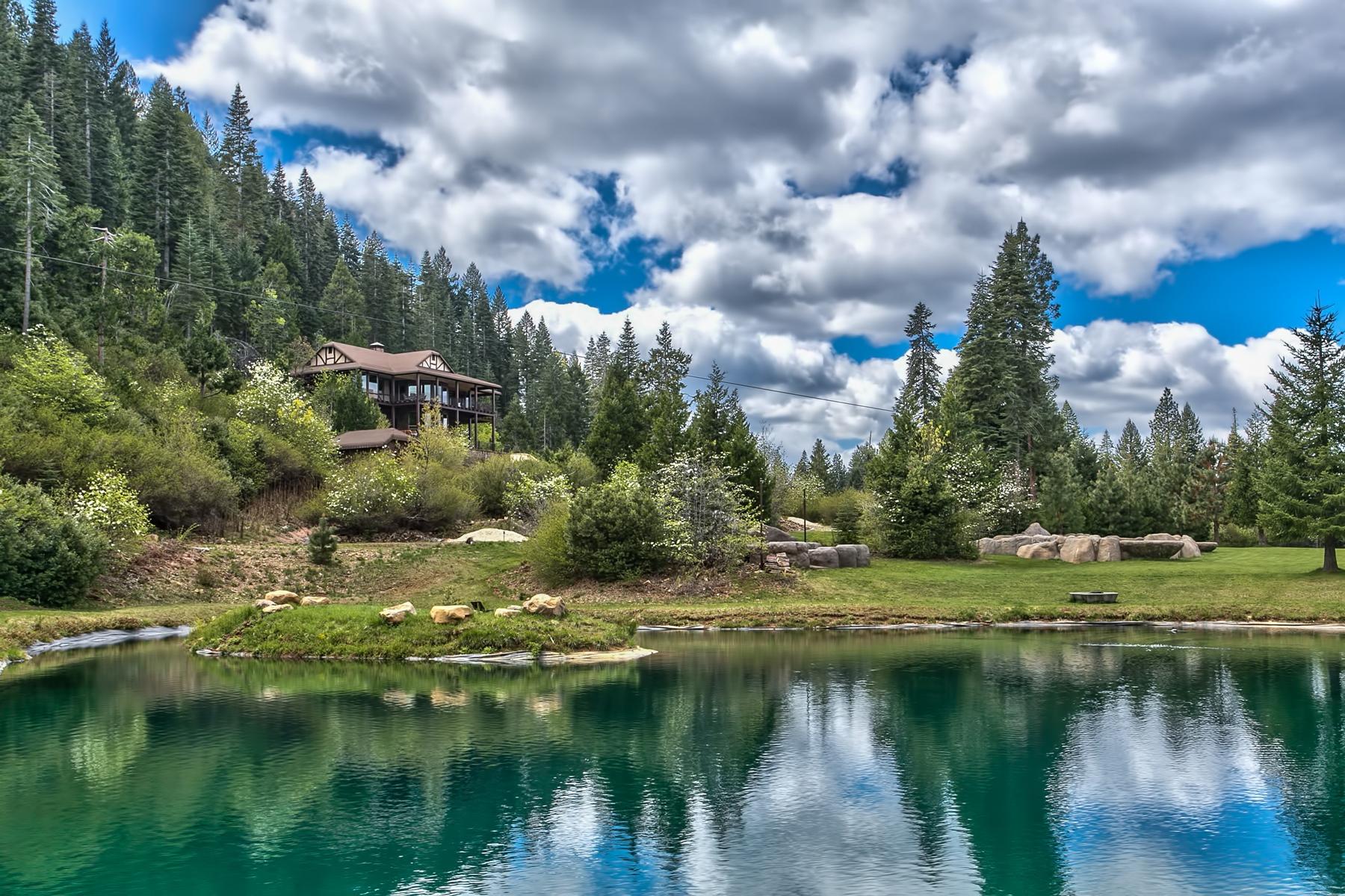 Single Family Home for Active at 28175 Myhrer Way Nevada City, California 95959 United States