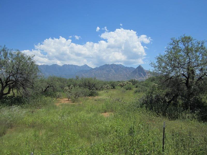 Terreno por un Venta en Perfectly Located at the Santa Rita Mountains 657 W Hawk Way Amado, Arizona 85646 Estados Unidos