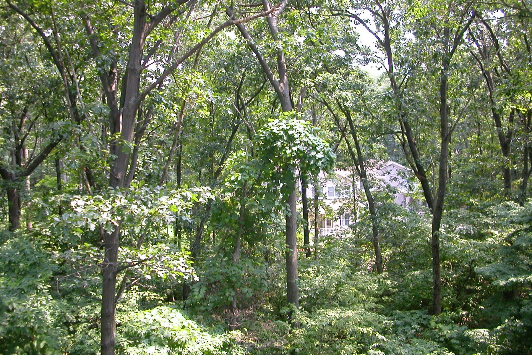 Land for Sale at Forest Beach 18342 Forest Beach Dr New Buffalo, Michigan 49117 United States