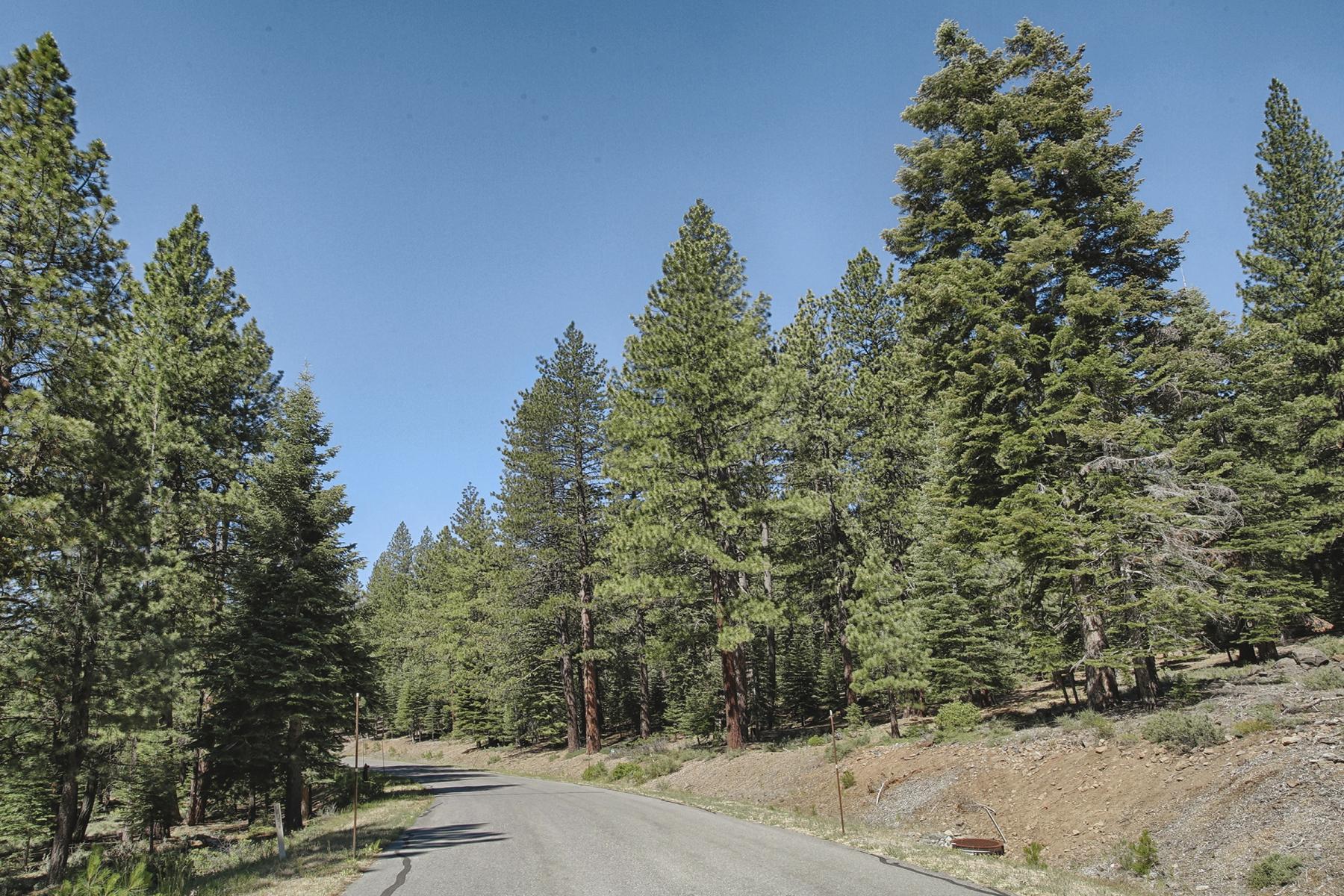 土地 为 销售 在 12008 Saddleback Drive 特拉基, 加利福尼亚州 96161 美国